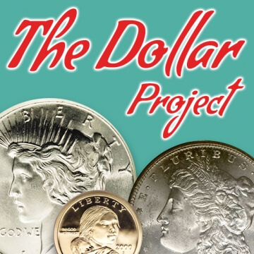 the dollar project graphic