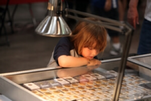 young boy looking at a case of coins