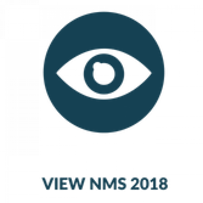 view nms 2018 icon