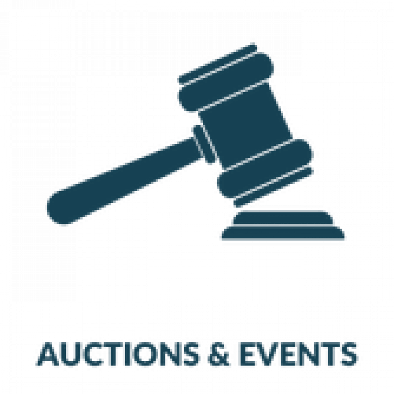 auctions events icon 167 x 167